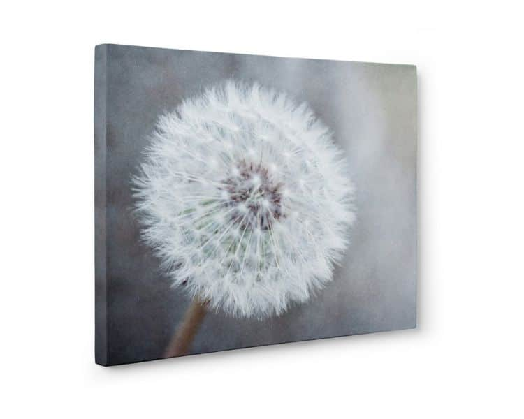 pinturas modernas para sala geniales fotografias