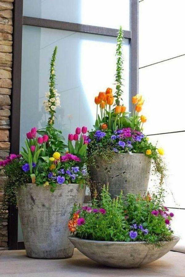 plantas de exterior para terrazas flores coloridas