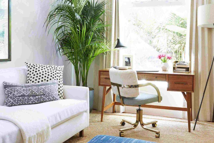 decoracion de oficinas pequeñas con plantas