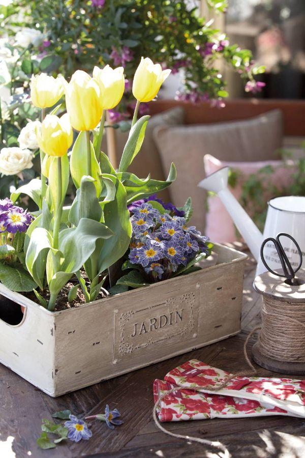 jardines pequeños con flores tulipanes