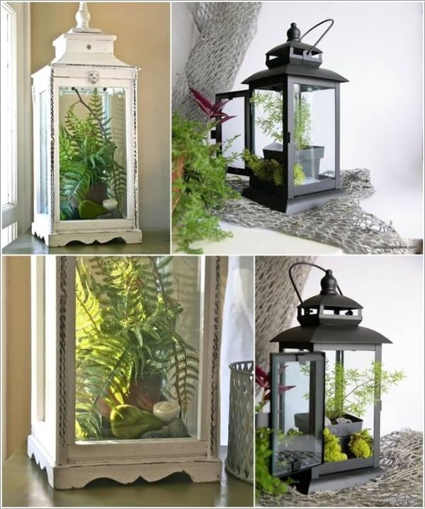 decoracion con plantas de interior ideas acuaticas